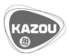 ic kazou lasergame